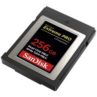 SanDisk CFExpress Card 256GB (SDCFE4NN-256GR)